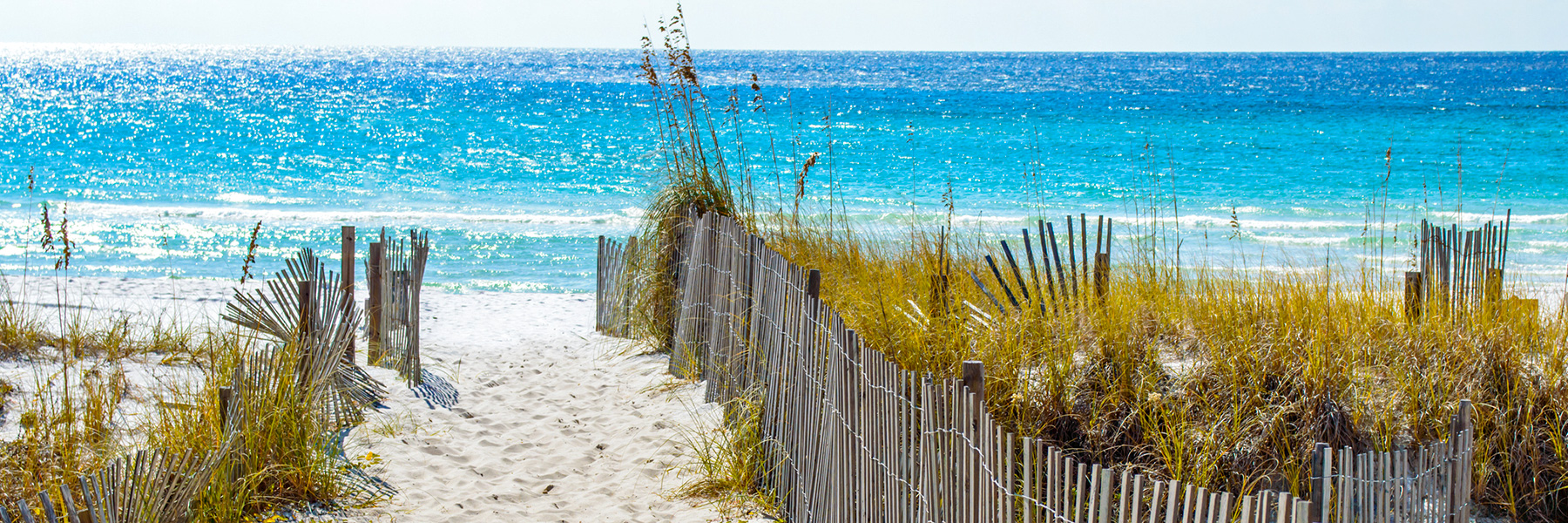 Local Happenings at Hillsboro Beach Resort